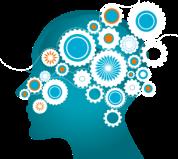 Cerveau Fonctionnement Psychologie